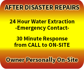 After Disaster Repairs